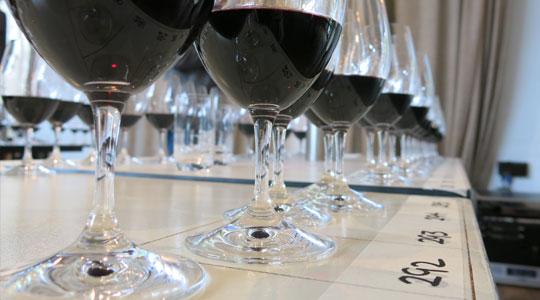 shiraz wines australia