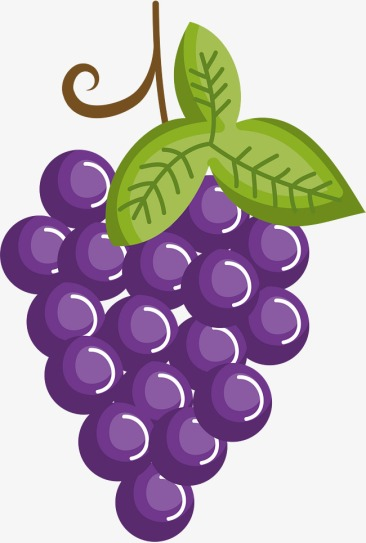 How-do-grapes-breathe